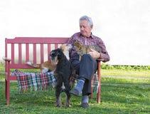 Vieil homme avec des animaux familiers Photo libre de droits