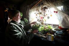 Vieil homme avec des fleurs Photo stock