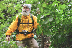 Vieil homme bouleversé trimardant dans la région boisée Images stock
