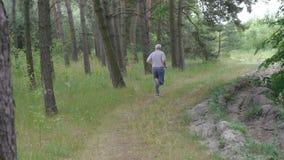 Vieil homme courant dehors dans un appareil-photo conifére de forêt derrière lui lentement banque de vidéos