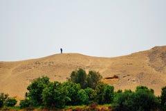 Vieil homme dans le désert Images stock