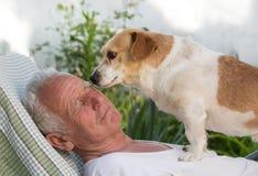 Vieil homme et baisers mignons de chien Image libre de droits