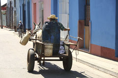 Vieil homme sur le chariot avec l'âne Photographie stock