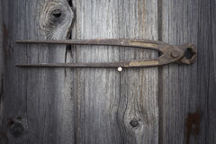 Vieil outil rouillé sur le fond en bois foncé Photo stock