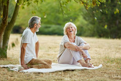 Vieillards heureux flirtant en parc Photographie stock