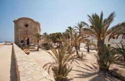 Vieille église parmi les paumes sur l'île Photographie stock libre de droits