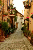 Vieille allée italienne Image libre de droits