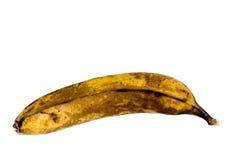 Vieille banane Photographie stock libre de droits