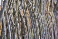 Vieille barrière abandonnée des branches Photo libre de droits