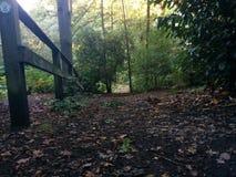 Vieille barrière dans Forrest Photographie stock