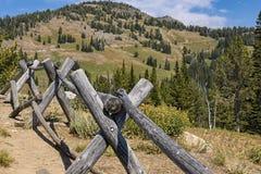 Vieille barrière de rondin dans l'alpin du parc national est du nord Wyoming Etats-Unis de Yellowstone Images stock
