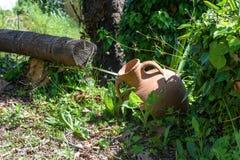 Vieille belle cruche d'argile avec une belle vue Photographie stock