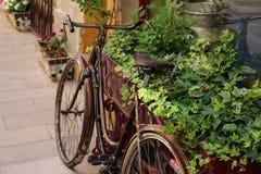 Vieille bicyclette Photo stock