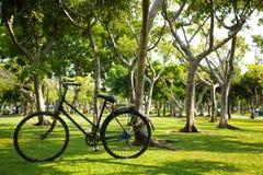 Vieille bicyclette en parc. Photo libre de droits