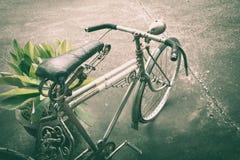 Vieille bicyclette rouillée près du pot de l'usine Images libres de droits