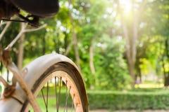 Vieille bicyclette rustique blanche avec le fond brouillé de parc Image libre de droits