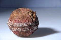 Vieille bille de cricket Photographie stock