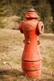 Vieille bouche d'incendie dans une ville fantôme en Colombie-Britannique Photographie stock
