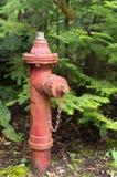 Vieille bouche d'incendie rouge Photographie stock