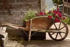Vieille brouette en bois avec des fleurs Images libres de droits