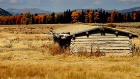 Vieille cabine de logarithme naturel occidentale de Yellowstone Photos stock