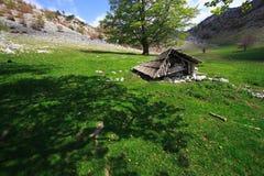 Vieille cabine de montagne Photographie stock libre de droits