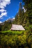 Vieille carlingue dans la chaîne de montagne de Tatras photos libres de droits