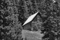 Vieille carlingue de rondin abandonnée dans la vallée d'Animas images stock