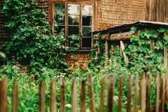 Vieille carlingue en bois de maison avec la fenêtre et les plantes vertes âgées dans le résumé Image libre de droits