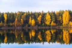 Vieille carrière de beau lac de forêt un jour clair d'automne photo stock