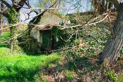 Vieille cave de vigne photographie stock