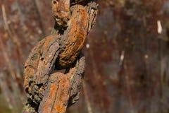 Vieille chaîne rouillée Image libre de droits