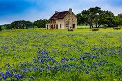 Vieille Chambre abandonnée en Texas Wildflowers photos stock