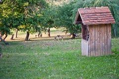 Vieille construction en bois Photographie stock