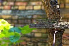 Vieille croix en bois de barrière Photos stock