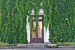 Vieille façade de maison couverte du raisin sauvage Image libre de droits