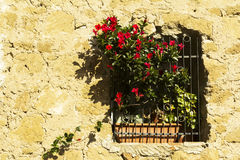 Vieille fenêtre avec des barres dans une ville de Toscane Photo stock