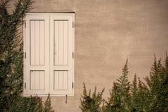 Vieille fenêtre en bois avec l'élevage de plante verte Photo libre de droits