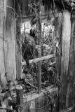 Vieille fenêtre en bois d'une maison abandonnée, B&W photos stock