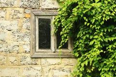 Vieille fenêtre en bois encadrée par les feuilles vertes images stock