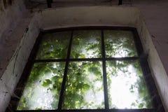 Vieille fenêtre enchantée Photos libres de droits