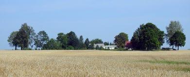 Vieille ferme dans le domaine, Lithuanie Image libre de droits