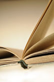 Vieille fin âgée de livre  Photos stock