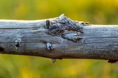 Vieille frontière de sécurité en bois Photos stock