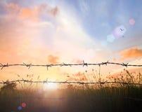 Vieille frontière de sécurité de barbelé Photo libre de droits