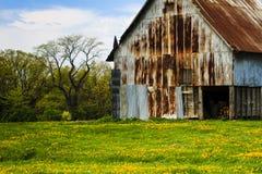 Vieille grange avec des pissenlits Photo libre de droits