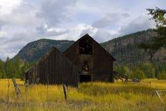 Vieille grange dans le domaine d'or Photographie stock libre de droits