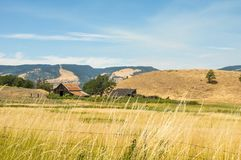 Vieille grange dans le pré Photo libre de droits