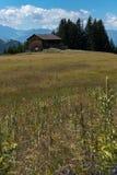 Vieille grange en bois dans un pré de wildflower au milieu un paysage suisse de montagne image libre de droits