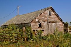 Vieille grange entourée par des mauvaises herbes Photographie stock libre de droits